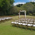 Gold tiffany chairs northlakes