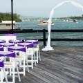 wedding-hire-chairs